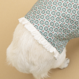 misty lace dog blouse