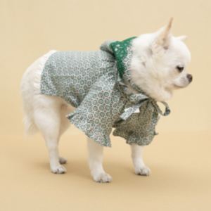 misty lace dog blouse