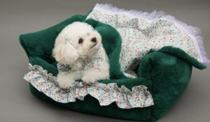 balmy boom dog bed