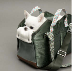 Swag Bag for Dogs