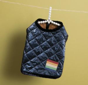 Velvety Rainbow Dog Vest