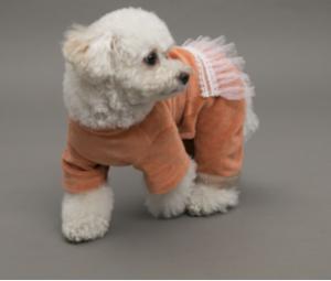Velvety Dog Romper