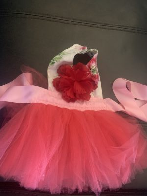 clearance floral tutu dog dress