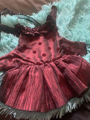 clearance burgundy polka dot dog dress