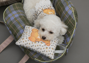 Honey Bear Dog Pillow