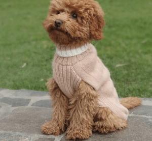 alpaca dusty pink dog sweater