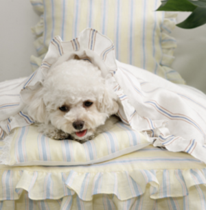 candy bar lace pillow