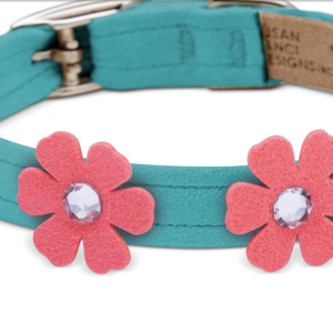pretty petunia dog collar