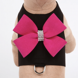 nouveau bow bailey dog harness