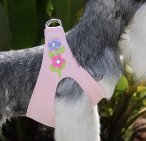 secret garden step in dog harness