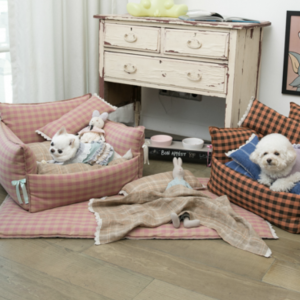 saturday sofa for dogs