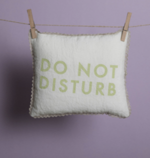 do not disturb dog pillow