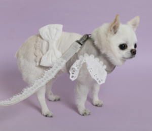 good vibes sleeveless dog shirt