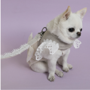 natural linen dog harness and leash