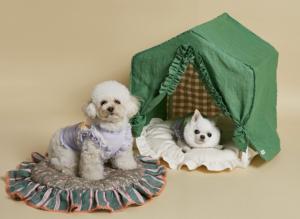 greeny peekaboo dog bed
