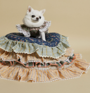 greeny chilling dog mat