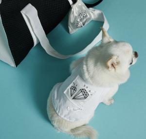 jet set sleeveless dog top