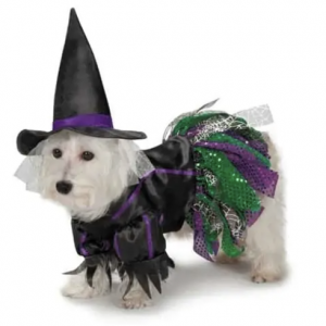 clearance scary witch costume