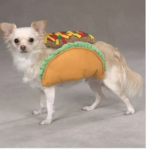 clearance taco dog costume