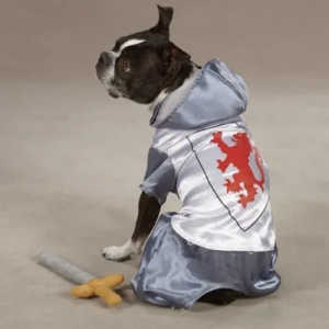 clearance knight dog costume