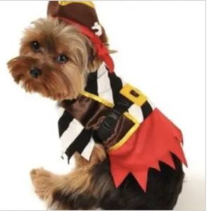 clearance rustic pirate dog costume