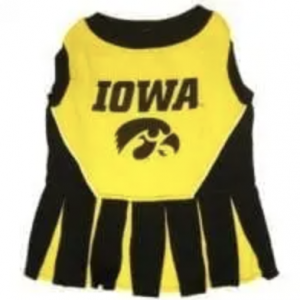 Clearance Iowa Cheerleader Dress for Dogs