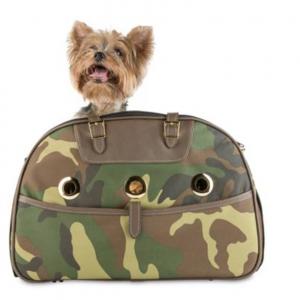 ariel dog carrier