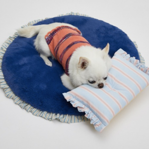 anywhere haven fur rug