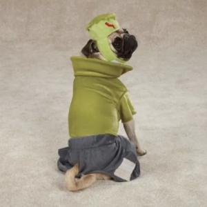 clearance frankenhound dog costume