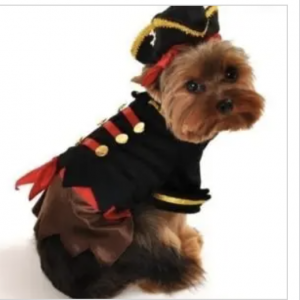 clearance buccaneer pirate dog costume