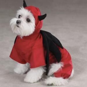 clearance devil dog costume