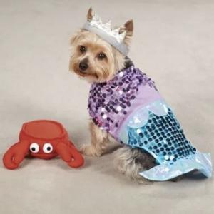 clearance mermaid dog costume