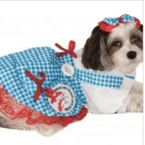 clearance wizard of oz dorothy dog costume