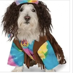 clearance hippie dog costume