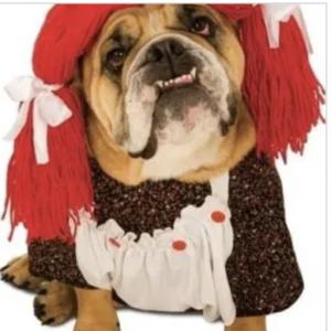 clearance rag doll dog costume