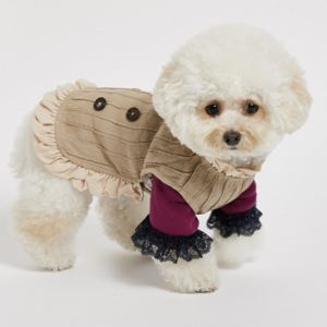 timeless trench for dogs