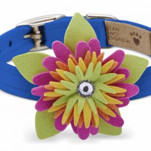 island flower dog collar