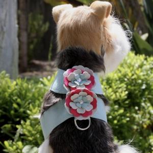 blossom flower tinkie dog harness